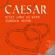 My black lady 2010 (Radio Version) - Caesar