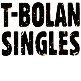 T BOLANの画像 p1_28