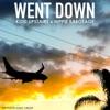 Went Down feat Hippie Sabotage Single
