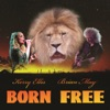 Born Free feat Kerry Ellis Single