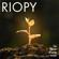 Le Rêve d'une note - RIOPY