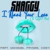 I Need Your Love Te Quiero Mas feat Mohombi Faydee Costi Single