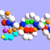 OnScreen DNA Replication - iPadアプリ