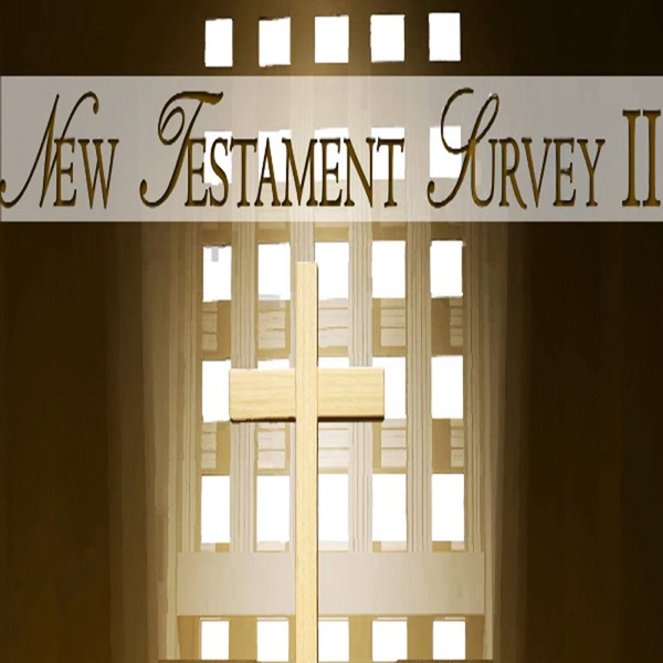 New Testament Survey II