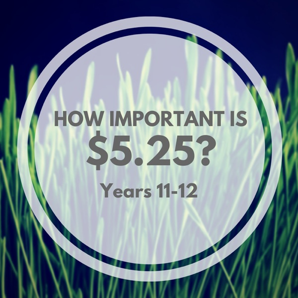 How Important is $5.25?