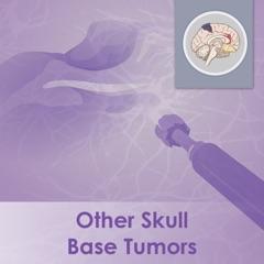 Other Skull Base Tumors