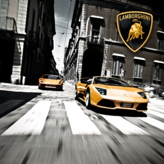 The World of Lamborghini