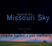Pat Metheny - The Moon Song