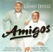 Amigos: Die Grossen Erfolge-Amigos