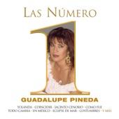 Guadalupe Pineda - Contigo