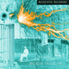 Positive Thinking - Acoustic Alchemy