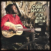 Corey Harris - Take Me Back