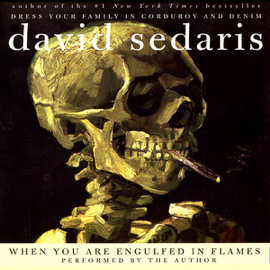 When You Are Engulfed in Flames (Unabridged) audiobook