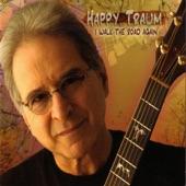 Happy Traum - Pinto Pony