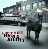 Gov't Mule - Like Flies