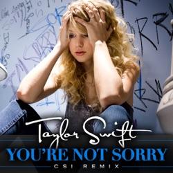 View album Taylor Swift - You're Not Sorry (CSI Remix) - Single