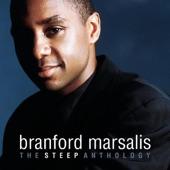 Branford Marsalis Trio - Cain & Abel (Album Version)