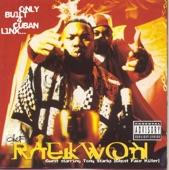 Raekwon - Ice Cream (feat. Ghostface Killah, Method Man & Cappachino)