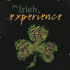 The Irish Experience - The Butterfly artwork