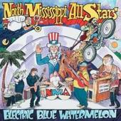 North Mississippi Allstars - Stompin' My Foot