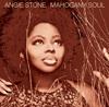 Angie Stone - Wish I Didn't Miss You bild
