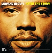 NORMAN BROWN - TAKE ME THERE