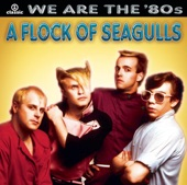 A Flock Of Seagulls - It's not me talking (extended) 67
