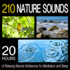210 Nature Sounds: 20 Hours of Relaxing Natural Ambiences for Meditation and Sleep - Pro Sound Effects Library