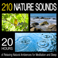 Pro Sound Effects Library - 210 Nature Sounds: 20 Hours of Relaxing Natural Ambiences for Meditation and Sleep artwork