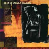 Chant Down Babylon-Bob Marley