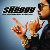 It Wasn't Me  feat. Ricardo Ducent  [feat. Ricardo Ducent] Shaggy