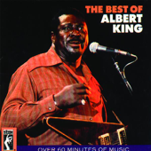 I'll Play The Blues For You-Albert King