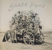 Bardo Pond - Pick My Brain
