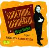 Bryn Terfel: Something Wonderful - Bryn Terfel, English Northern Philharmonia & Paul Daniel
