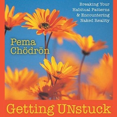Getting Unstuck: Breaking Your Habitual Patterns and Encountering Naked Reality