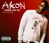 I Wanna Love You - Akon featuring Snoop Dogg