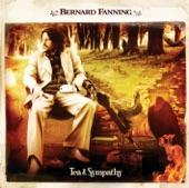 Bernard Fanning - Wish You Well