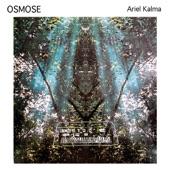 Ariel Kalma - Orguitar Soir