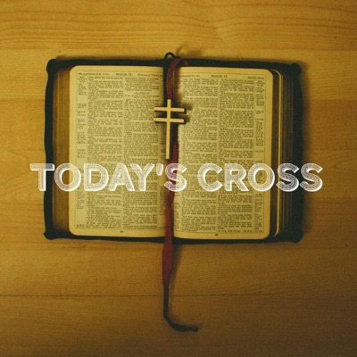 Today's Cross - Single - Frightened Rabbit