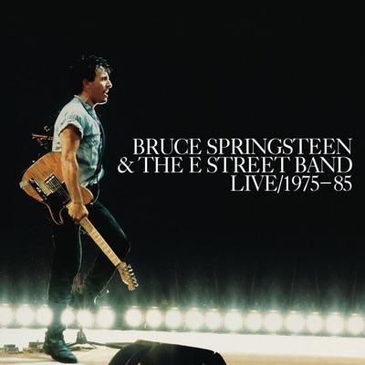 Bruce Springsteen & the E Street Band Live 1975-85 - Bruce Springsteen
