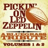 Pickin' On Led Zeppelin, Vols. 1 & 2