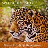 Splendid Beauty: Classical Indian Flute & Violin
