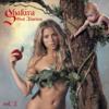 Shakira - Hips Don't Lie (feat. Wyclef Jean) artwork