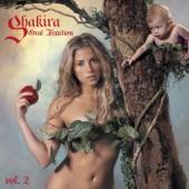 Shakira - Hips Don't Lie