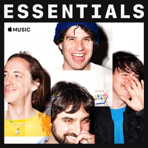 Animal Collective Essentials
