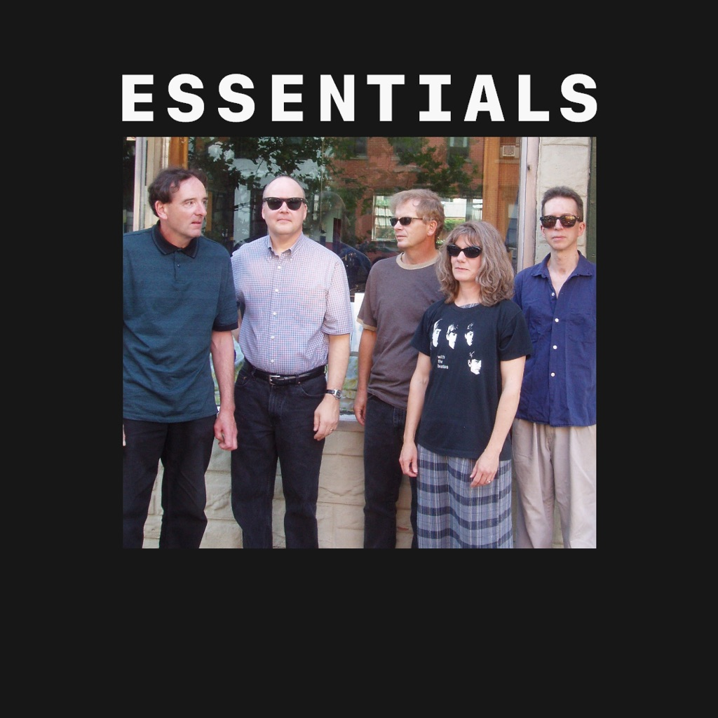 The Feelies Essentials