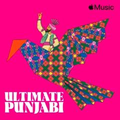 Ultimate Punjabi