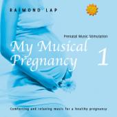 My Musical Pregnancy 1