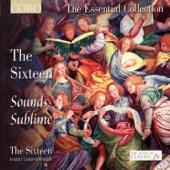 The Sixteen, Harry Christophers - Cantata 50, BWV 50: Nun ist das Heil und die Kraft