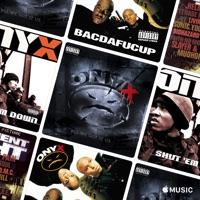 Onyx Bacdafucup 2